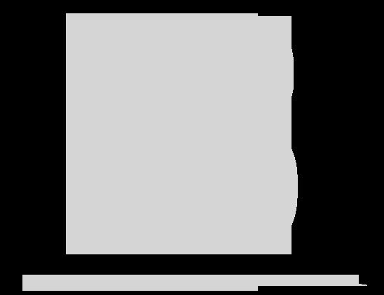 Laramie Briscoe